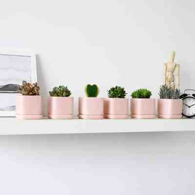 Amazon: Ceramic Plant Pots & Hangers Just $5.49-13.49