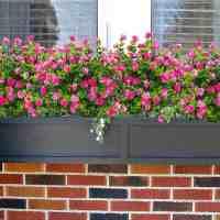 Amazon : 6Pcs Cabin Fake Flowers Just $5.49 - $5.99 W/Code (Reg : $11.99)