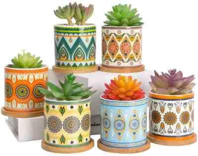 Amazon: AlpsPro set of 6 ceramic succulent planters, Just $11+ (Reg $23.99) after code!