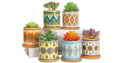 Amazon: Plant Pots – 3.5 inch Ceramic Succulent Planter $10.99 ($22)