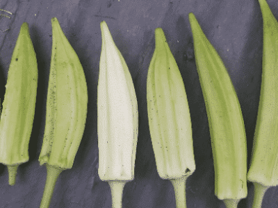 Free Okra Seeds to your home garden