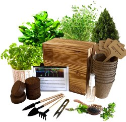 Amazon: Hand-Mart Plants Seeds Complete Kit with Wood Planter for Garden for ONLY $12.99 (Reg. $25.99)