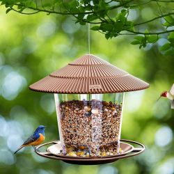 Amazon: Hanizi Bird Feeder $6.99 (Reg. $13.99)