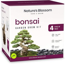 Amazon: Nature's Blossom Bonsai Tree Seed Starter Kit for ONLY $6.25 (Reg. $24.99)