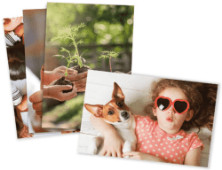 """Get 21 4x5.3"""" or 4x6"""" Photo Prints for FREE"""