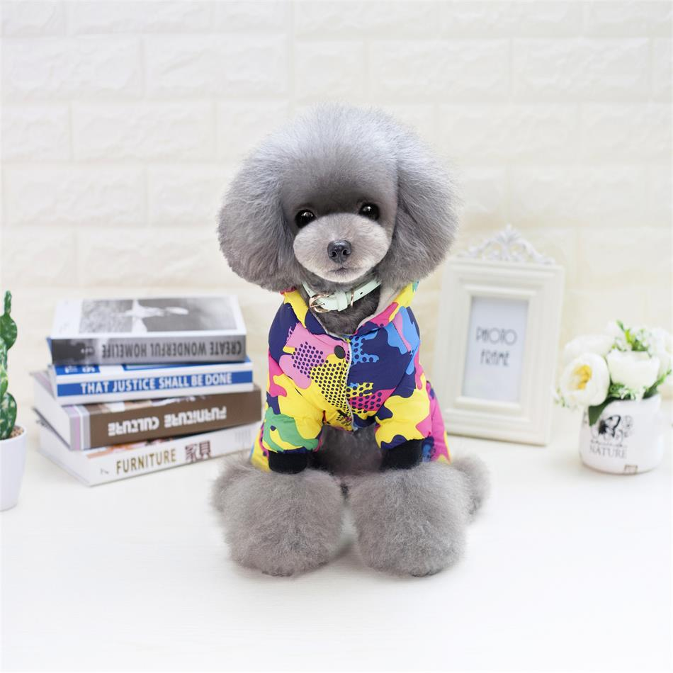 Top 5 cheapest polyester coats for female dogs on AliExpress