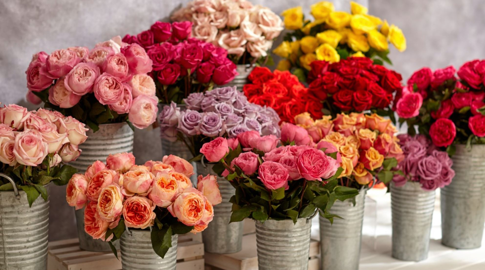 Order early and save big for Valentine's day with FTD