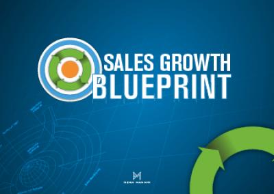Sales Growth Blueprint