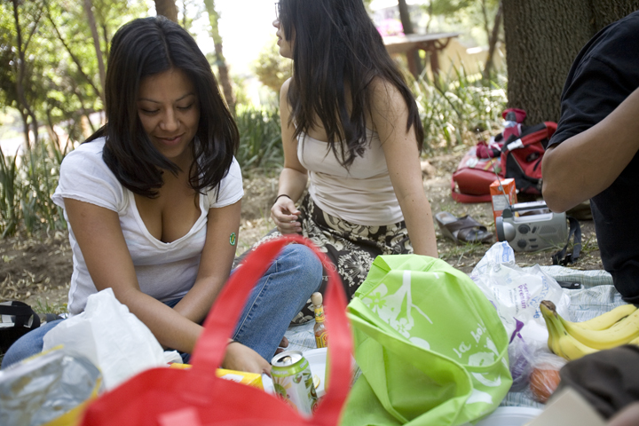 picnic01_lres