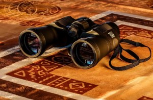 Best value 10x42 binocular2019
