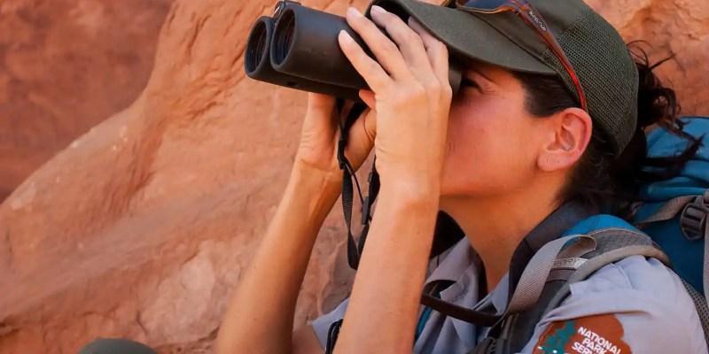 best rated 10x42 binoculars 2019