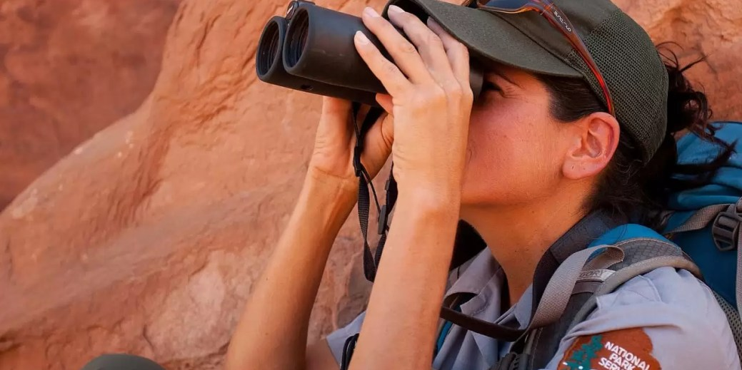 Best 10x42 Binoculars for the Money 2019 (Beginners to