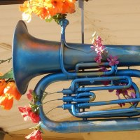 Tuba with Flowers by Michael Coghlan