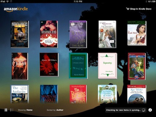 iPad eBook App Review