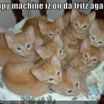 funny-pictures-your-copy-machine-has-produced-many-cats