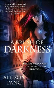 a brush of darkness by alison pang