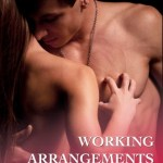 Working arrangements ellen wolf