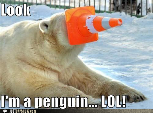 bearguin