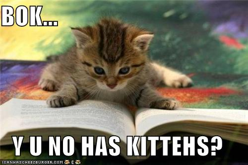 http://icanhascheezburger.com/2010/11/29/funny-pictures-itteh-bitteh-contest/