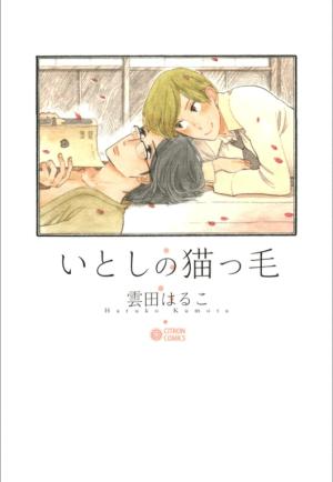 Cover of My Darling Kitten Hair, a 168-page manga by Haruko Kumota