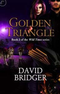 David BridgerGolden Triangle