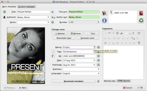 Screenshot of self published ebook metadata screen