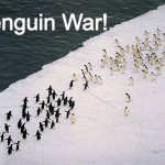 Penguin war