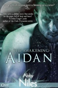 The Awakening: Aidan by Abby Niles