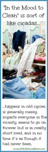Messy dorm room in the mood to clean is like cicadas