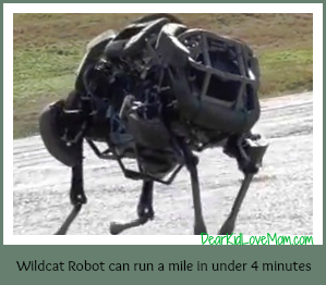 Wildcat robot can run a mile in under 4 minutes DearKidLoveMom.com
