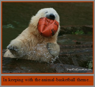 Polar Bear eating basketball DearKidLoveMom.com