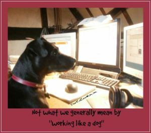 "Not what we generally mean by ""working like a dog."" DearKidLoveMom.com"