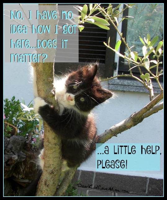 No, I don't know how I got here...does it matter? Um, a little help,please! DearKidLoveMom.com