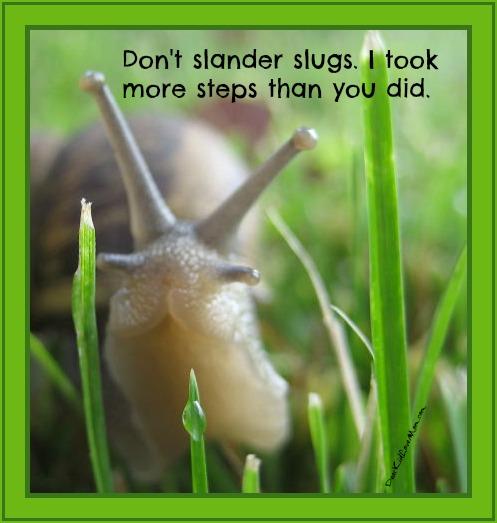 Don't slander slugs. I took more steps than you did. DearKidLoveMom.com