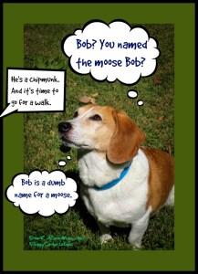 Bob is a dumb name for a moose. DearKidLoveMom.com/PuppyConversations