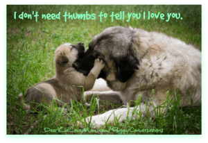 I don't need thumbs to tell you I love you. Happy If Your Pet Had Thumbs Day. DearKidLoveMom.com