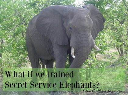 5 reasons we should have Secret Service Elephants DearKidLoveMom.com You won't believe #4!