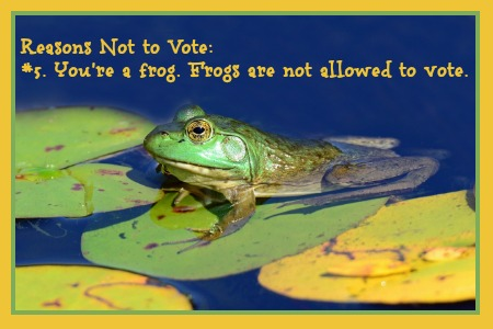 Reasons NOT to Vote: #5. You're a frog. Frogs aren't allowed to vote. DearKidLoveMom.com
