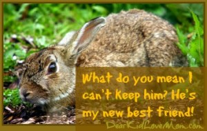 """What has he got?"" ""I'm not sure."" ""It's a RABBIT!!"" ""It's a baby bunny!!!!"" ""Puppy, stop that!"" DearKidLoveMom.com"