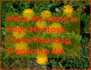 Hello. My name is Inigo Montoya. I have Roundup. Prepare to die. DearKidLoveMom.com