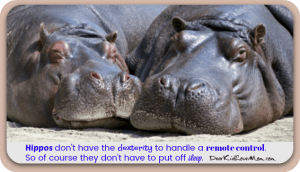 Hippos don't have the dexterity to handle a remote control. So of course they don't have to put off sleep. DearKidLoveMom.com