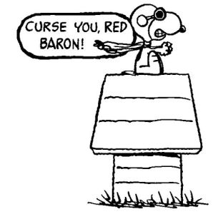 Not the cool, imaginary Snoopy and the Red Baron kind of dog fight. DearKidLoveMom.com