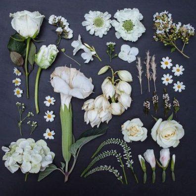 Anche i fiori diventano compost