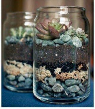 simple-diy-for-terrarium