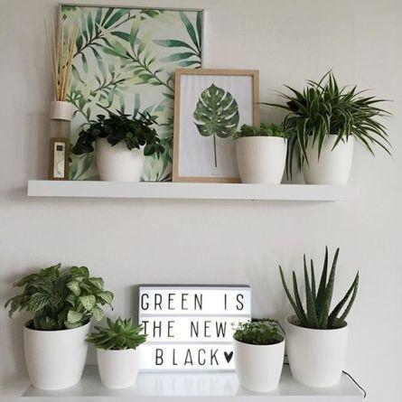 dk-giardino-cucina