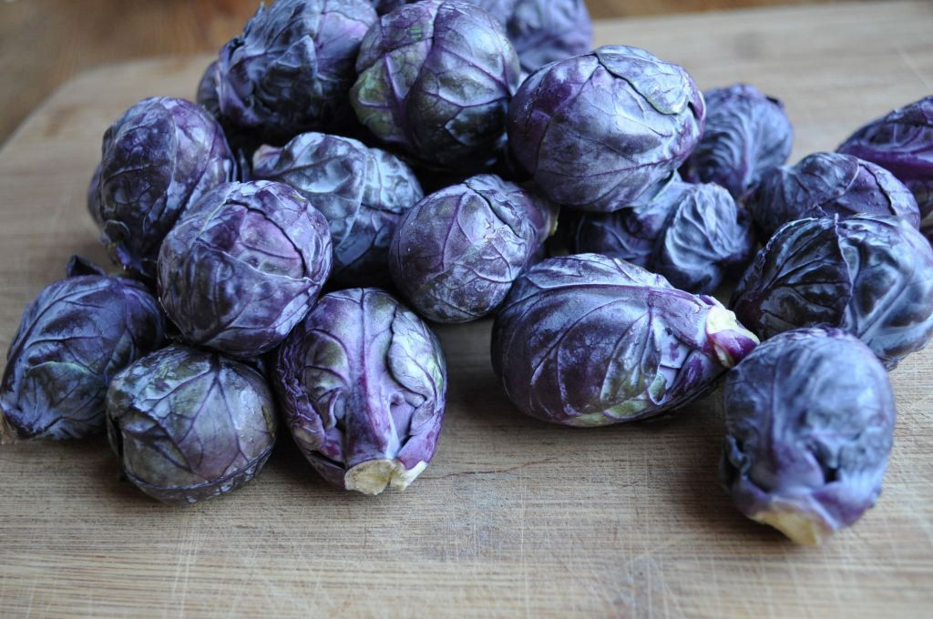 deep purple falstaff brussels sprouts