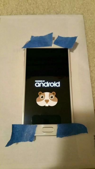 Galaxy S6 filtrado_4