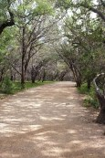 The main trail to Pedernales Falls