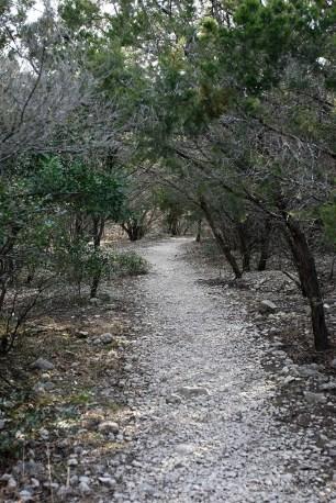 Bird Trail