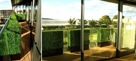 Balkon Sichtschutz Mit Vertikalem Garten Gnstig Amp Effektiv